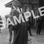 Arrival-of-Cavalcade-Camels-at-Waterport-Jan-1972